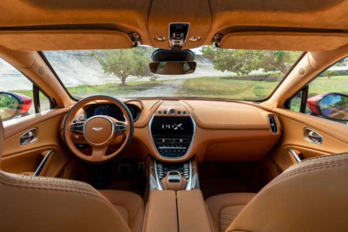 Aston Martin DBX 13